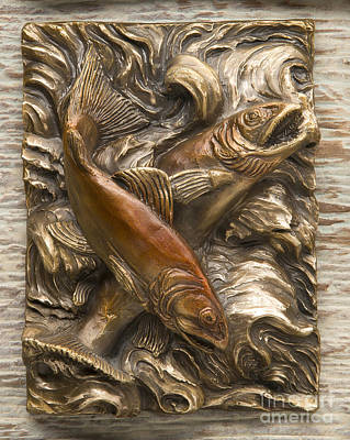 Sculpture - Brook Trout - Bronze Relief by Dawn Senior-Trask
