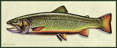 Painting - Brook Trout Id by Jon Q Wright