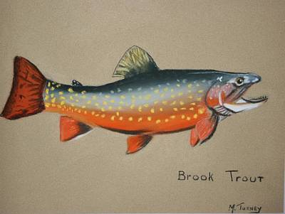 Pastel - Brook Trout by Michele Turney
