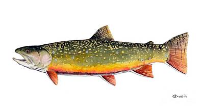 Brook Trout Watercolor Painting Art Print