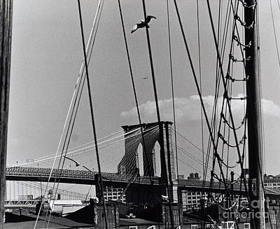 South Street Photograph - Brooklyn Bridge From South Street Seaport by Anthony Butera