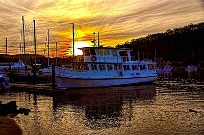 Photograph - Brooklyn by Diana Mary Sharpton