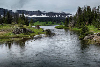 Photograph - Brooks Lake Creek, Wyoming by Marie Leslie