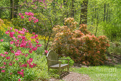 Photograph - Brookside Gardens 2 by Chris Scroggins