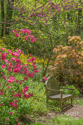 Photograph - Brookside Gardens 3 by Chris Scroggins