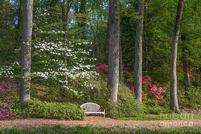 Photograph - Brookside Gardens 7 by Chris Scroggins