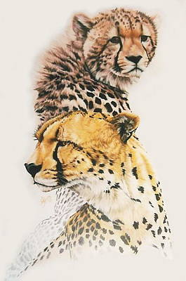 Cheetahs Drawing - Brother Of The Wind by Barbara Keith