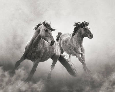 Photograph - Brothers Of The Dust by Ron McGinnis