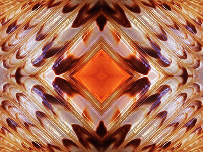 Photograph - Brown And Orange Shell Abstract by Gill Billington
