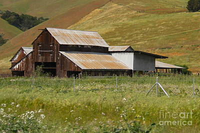 Photograph - Brown Barn Hill by Suzanne Oesterling