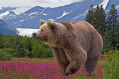 Photograph - Brown Bear 2 by Larry Linton
