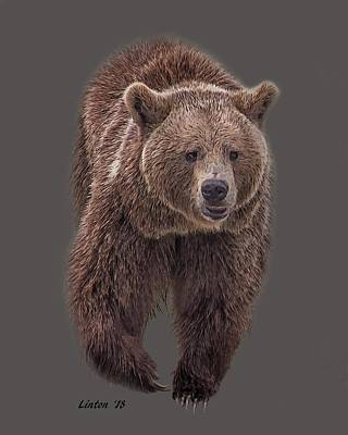 Digital Art - Brown Bear 8   by Larry Linton