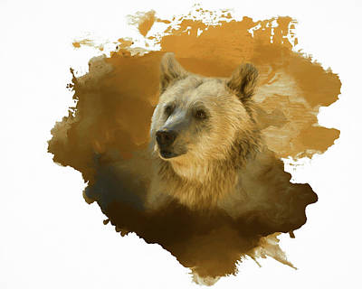 Painting - Brown Bear by Steven Richardson