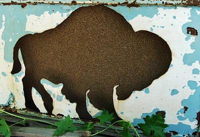 Photograph - Brown Buffalo by Larry Campbell