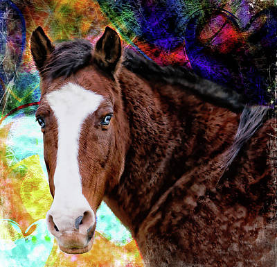 Photograph - Brown Horse Digital Art by Virginia Folkman