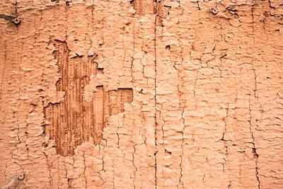 Brown Paint Texture Art Print by John Williams