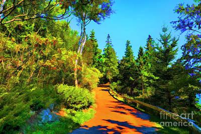 Photograph - Brown Path by Rick Bragan