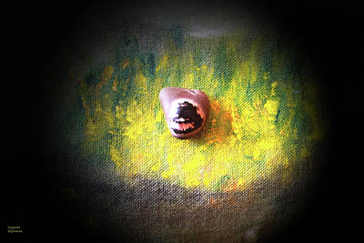 Photograph - Brown Pebble In Yellow Light by Augusta Stylianou