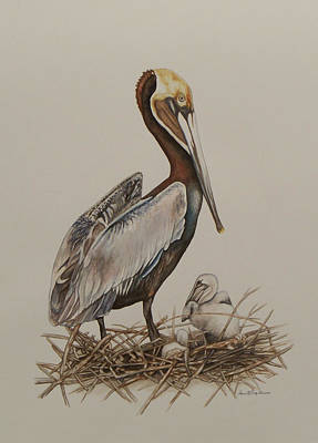 Painting - Brown Pelican And Chicks by Laurie Tietjen