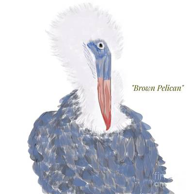 Photograph - Brown Pelican Illustration by Susan Garren