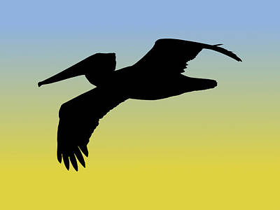 Drawing - Brown Pelican In Flight Silhouette At Sunrise by Marcus England