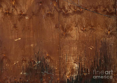 Photograph -  Repair Work In Brown by Nareeta Martin