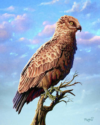 Harrier Painting - Brown Snake Eagle by Anthony Mwangi