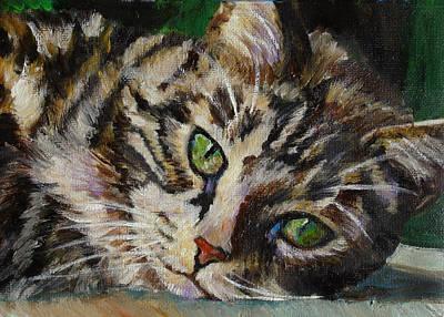 Brown Tabby Cat Art Print by Mary Jo Zorad