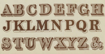 Typographic Drawing - Brown Times New Roman by English School