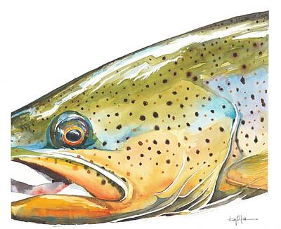 Trout Painting - Brown Trout by Dan Park
