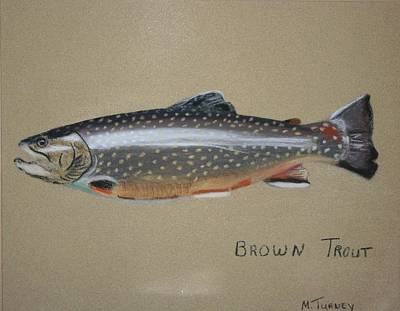 Pastel - Brown Trout by Michele Turney