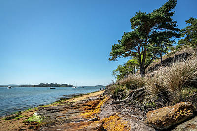 Photograph - Brownsea Island Shore by Framing Places