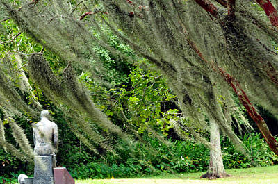 Photograph - Brownwell Memorial Park by Helen Haw