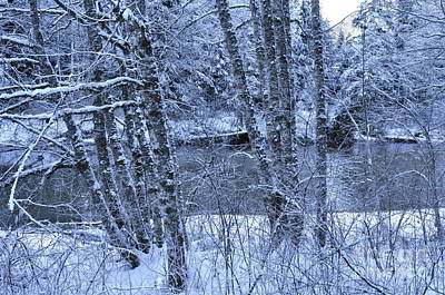 Photograph - Brrrrr by Clayton Bruster