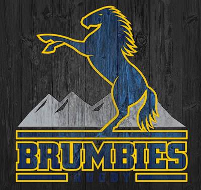 Rugby Mixed Media - Brumbies Graphic Barn Door by Dan Sproul