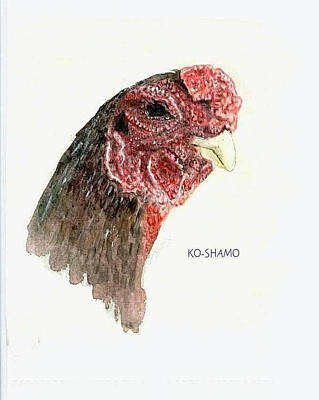 Bruno The Ko Shamo Rooster Art Print