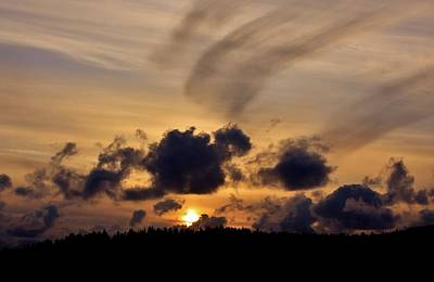 Neah Bay Photograph - Brush Stroke by Stacie Gary