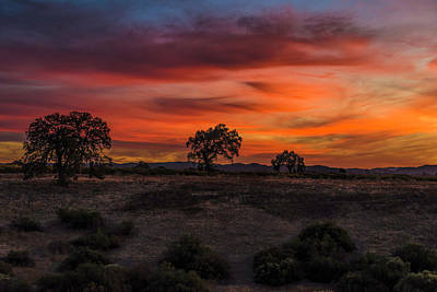 Mcherdering Photograph - Brushstrokes In The Sky by Mike Herdering