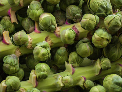 Photograph - Brussel Sprouts by Stewart Helberg