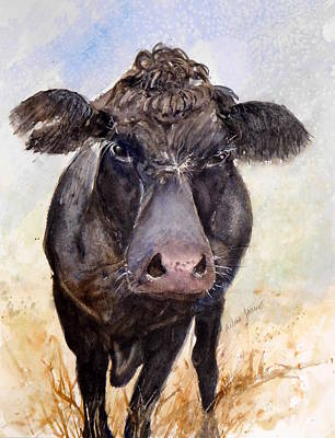 Painting - Brutus - Black Angus Cattle by Anna Jacke