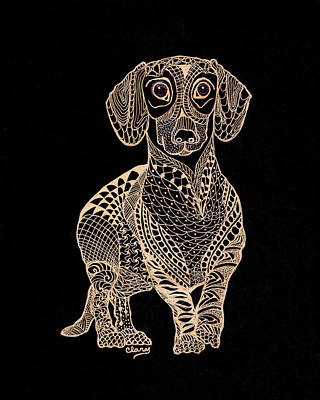 Dachshund Art Drawing - Brutus by Linda Clary