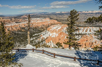Bryce Amphitheater From Bryce Point Art Print