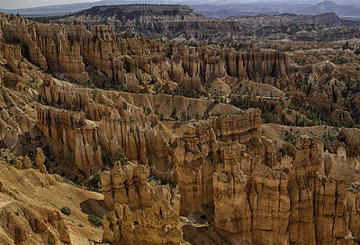 Photograph - Bryce Beauty by Elizabeth Eldridge