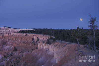 Photograph - Bryce Before Dawn by Stan and Anne Foster