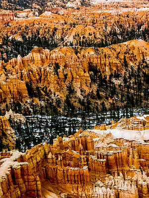 Photograph - Bryce Canyon Series #3 by Patti Deters