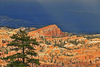 Photograph - Bryce Canyon 19 - Sunrise Point by Allen Beatty