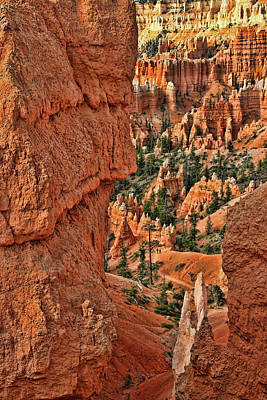 Photograph - Bryce Canyon 21 - Sunrise Point by Allen Beatty