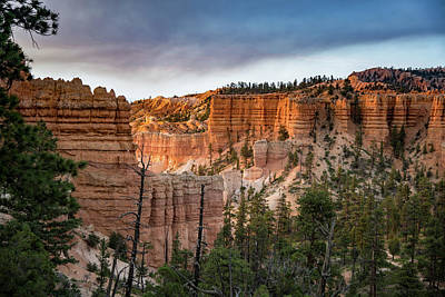Photograph - Bryce Canyon 4 by Phil Abrams