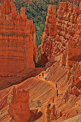 Photograph - Bryce Canyon 49 - Sunrise Point by Allen Beatty