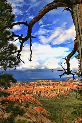 Photograph - Bryce Canyon 29 - Bryce Point by Allen Beatty